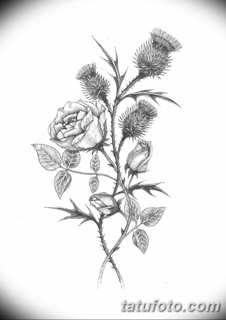 черно белый эскиз тату рисункок веточки 11.03.2019 №010 - tattoo sketch - tatufoto.com