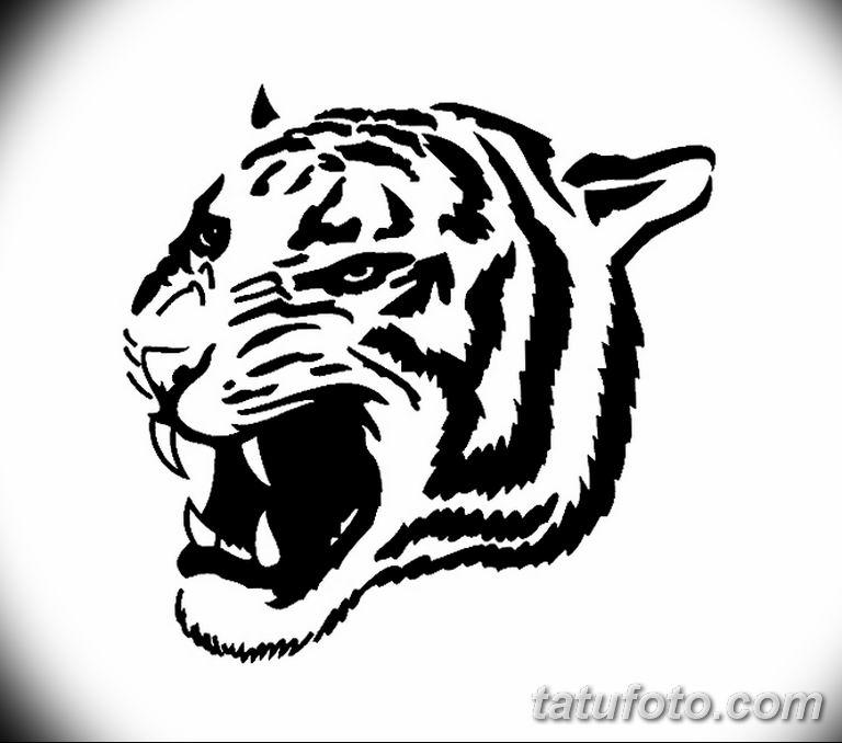 Черно белый эскиз тату с цветами: черно белый эскиз тату рисункок тигр 11.03.2019 №060