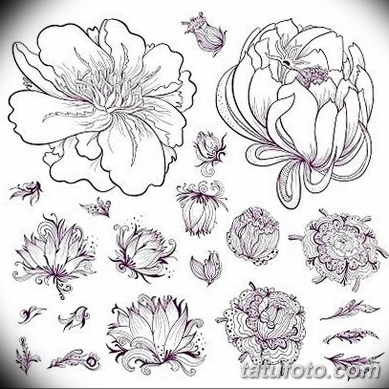 Черно белый эскиз тату с цветами: черно белый эскиз тату рисункок цветок 11.03.2019 №069