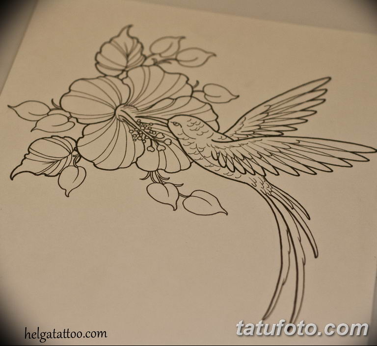 эскизы тату колибри для девушек 08.03.2019 №020 - tattoo sketches - tatufoto.com
