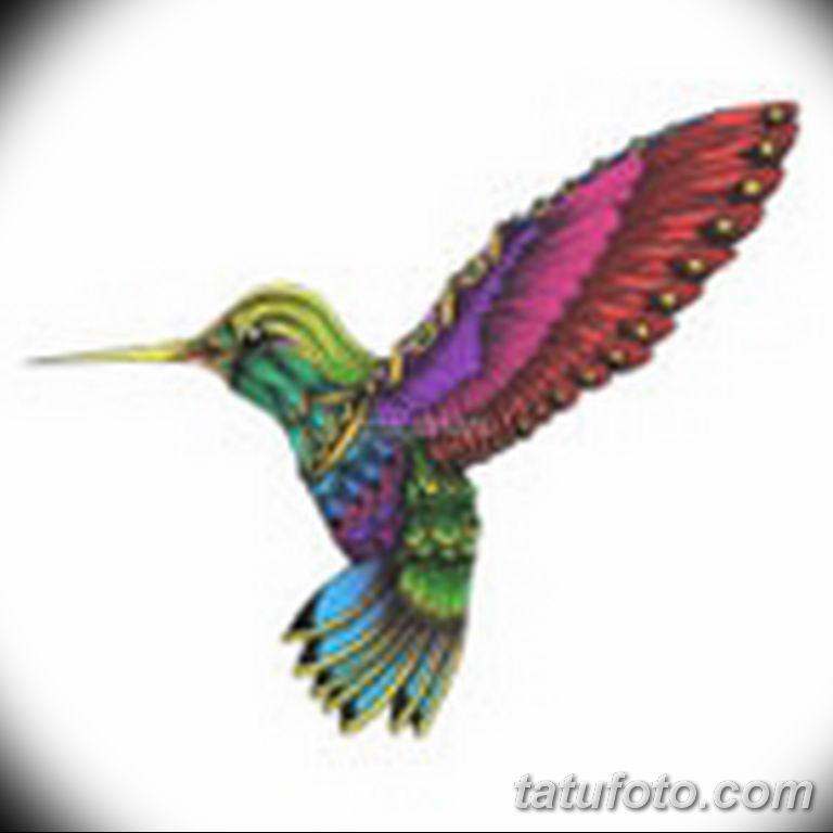 эскизы тату колибри для девушек 08.03.2019 №021 - tattoo sketches - tatufoto.com