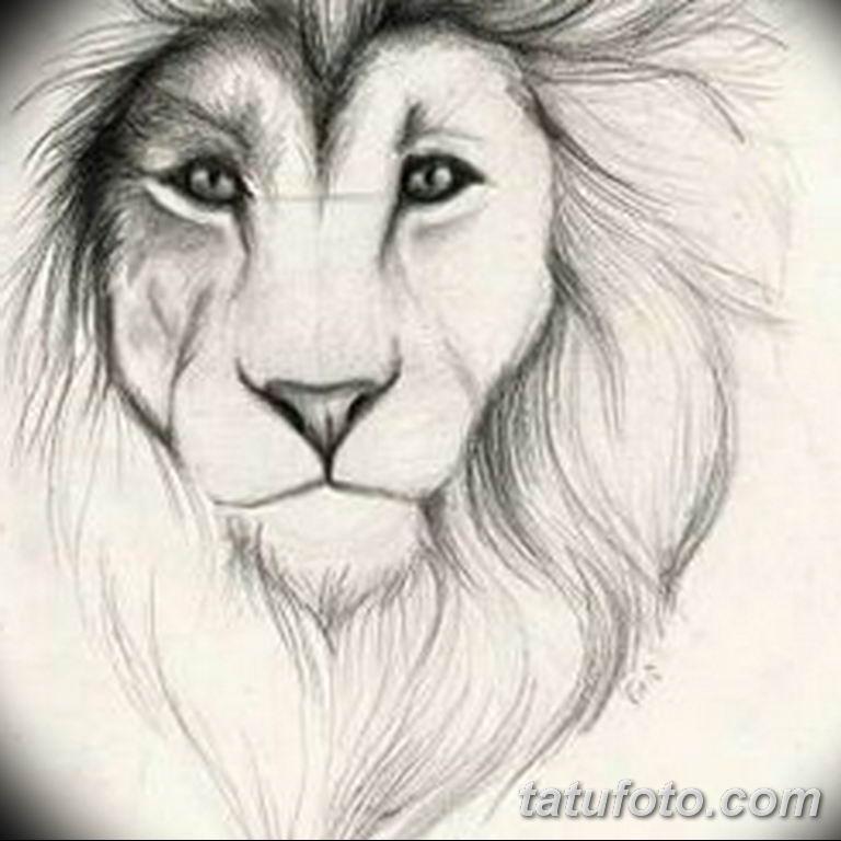 эскизы тату львов для девушек 08.03.2019 №008 - tattoo sketches - tatufoto.com