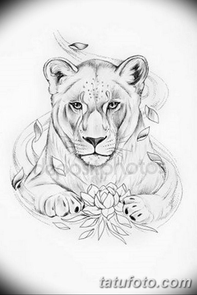 эскизы тату львов для девушек 08.03.2019 №014 - tattoo sketches - tatufoto.com