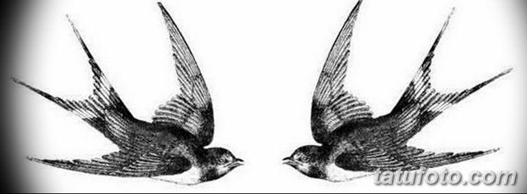 эскизы тату птиц для девушек 08.03.2019 №002 - tattoo sketches - tatufoto.com