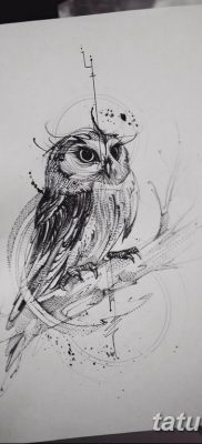 эскизы тату сова мужские 09.03.2019 №026 – tattoo sketches – tatufoto.com