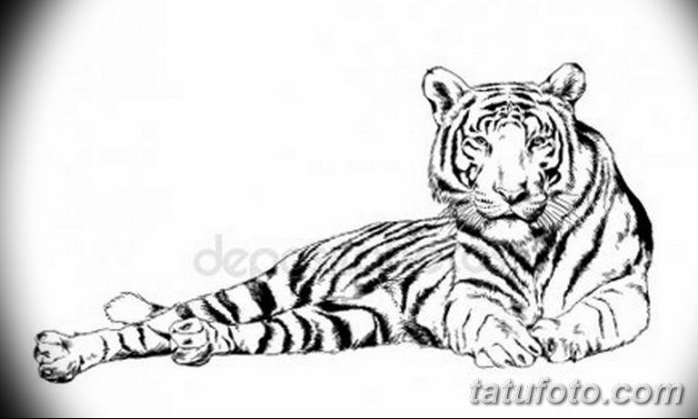 эскизы тату тигр для девушки 08.03.2019 №019 - tattoo sketches - tatufoto.com