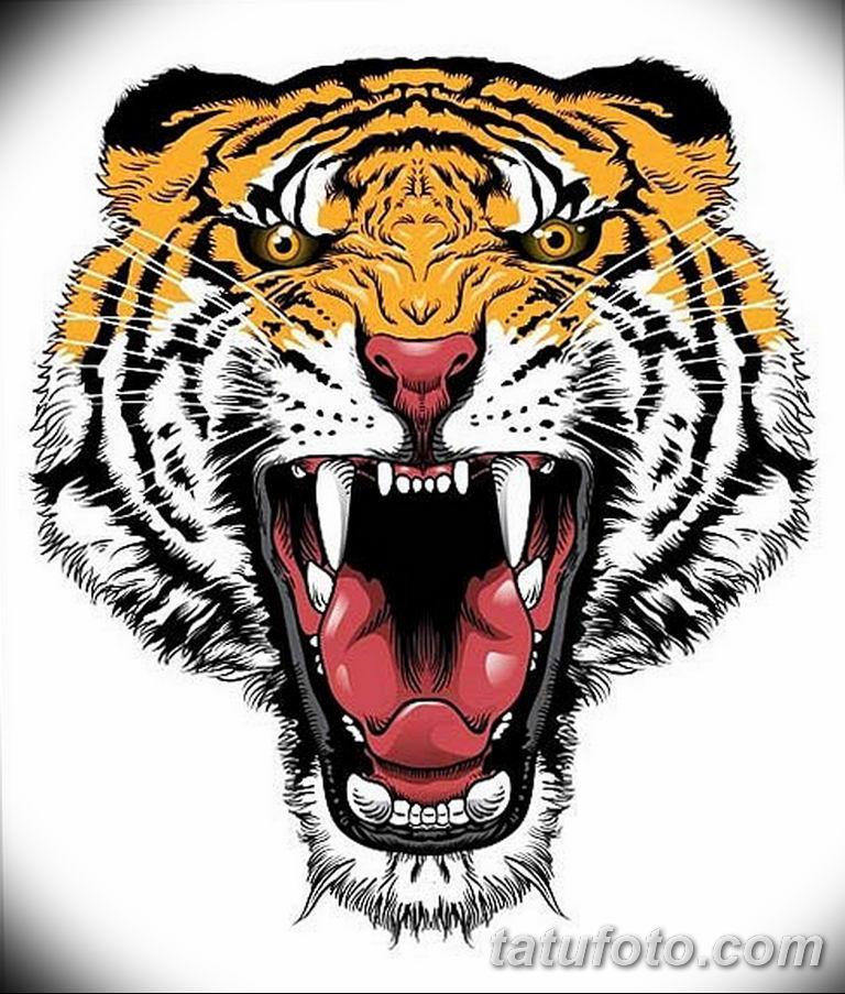 эскизы тату тигр для девушки 08.03.2019 №031 - tattoo sketches - tatufoto.com