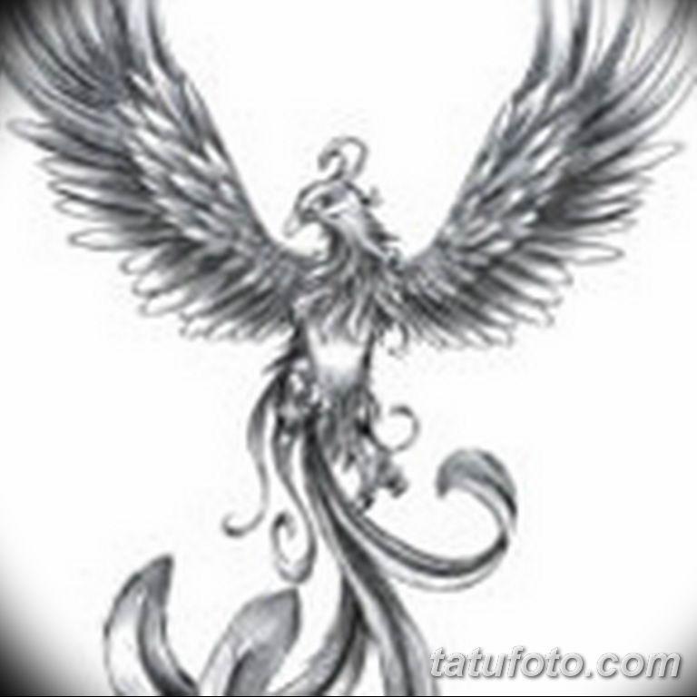 эскизы тату феникса для девушек 08.03.2019 №010 - tattoo sketches - tatufoto.com