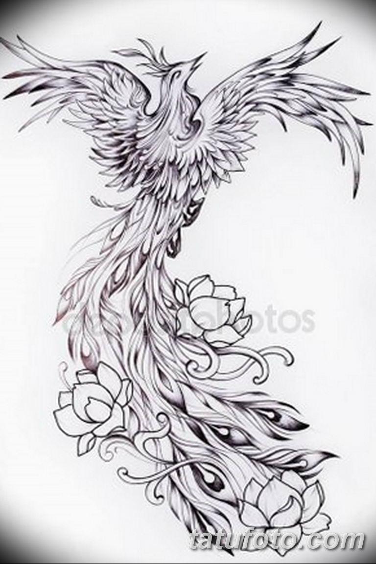 эскизы тату феникса для девушек 08.03.2019 №015 - tattoo sketches - tatufoto.com