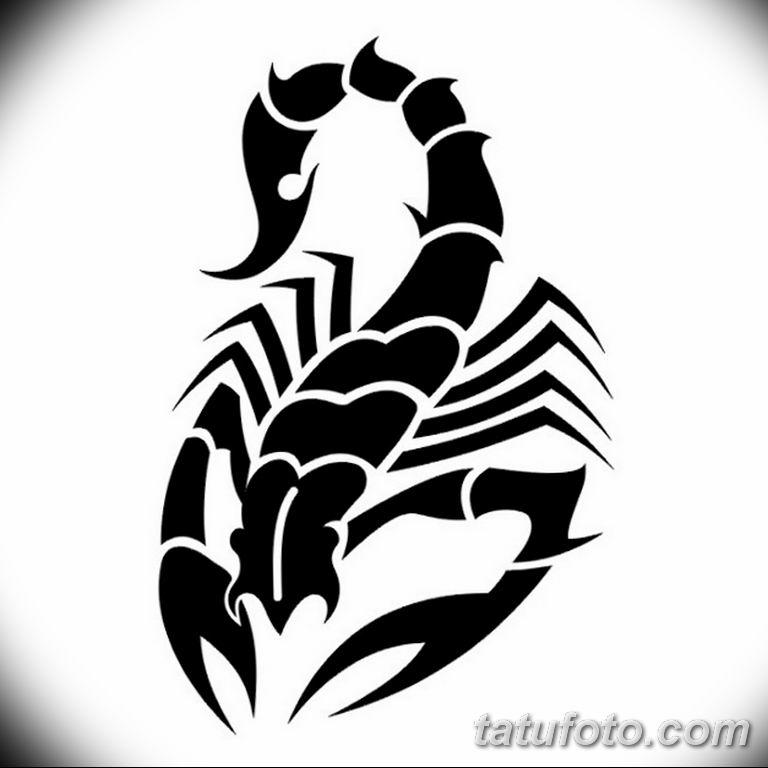 эскиз тату скорпиона для девушек 08.03.2019 №005 - tattoo sketches - tatufoto.com