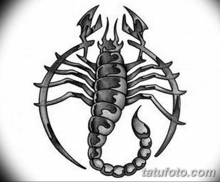 эскиз тату скорпиона для девушек 08.03.2019 №007 - tattoo sketches - tatufoto.com