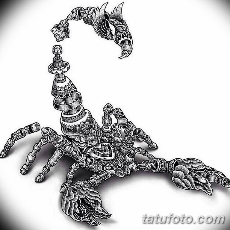 эскиз тату скорпиона для девушек 08.03.2019 №011 - tattoo sketches - tatufoto.com