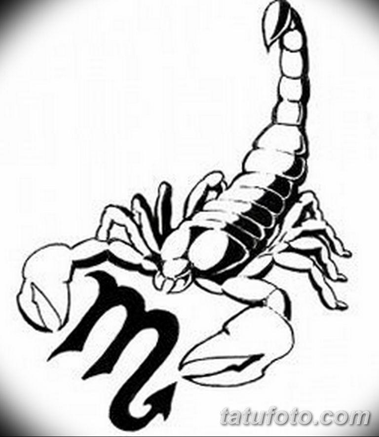 эскиз тату скорпиона для девушек 08.03.2019 №013 - tattoo sketches - tatufoto.com