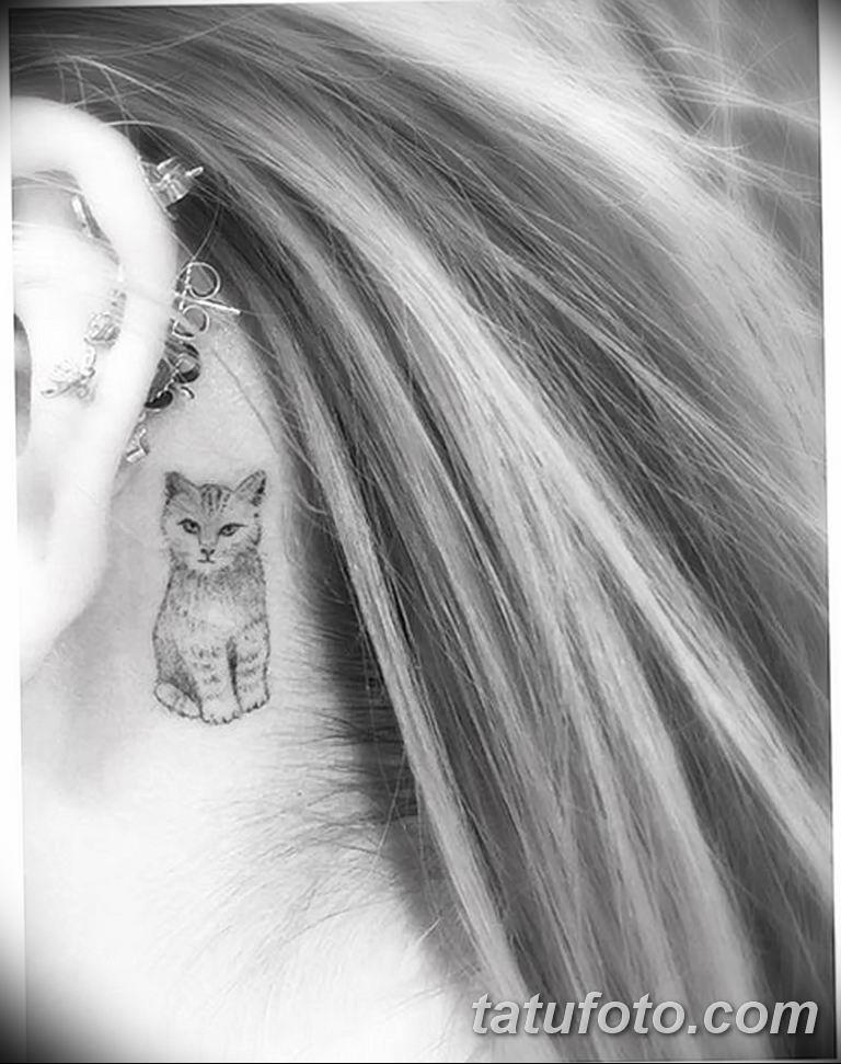 Тату Беллы Торн - кошка за ухом