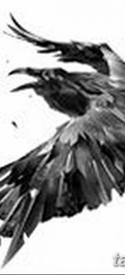 Фото тату черный ворон 15.04.2019 №080 – ideas black raven tattoo – tatufoto.com