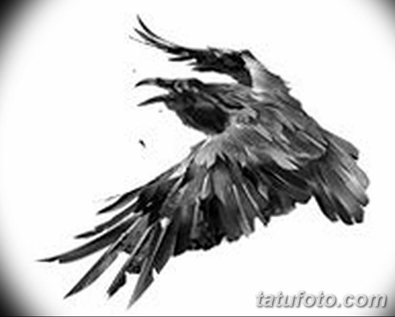 Фото тату черный ворон 15.04.2019 №080 - ideas black raven tattoo - tatufoto.com