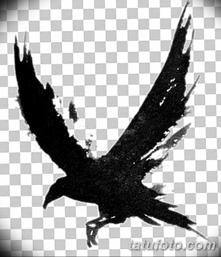 Фото тату черный ворон 15.04.2019 №081 - ideas black raven tattoo - tatufoto.com