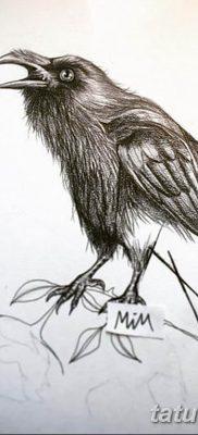 Фото тату черный ворон 15.04.2019 №089 – ideas black raven tattoo – tatufoto.com