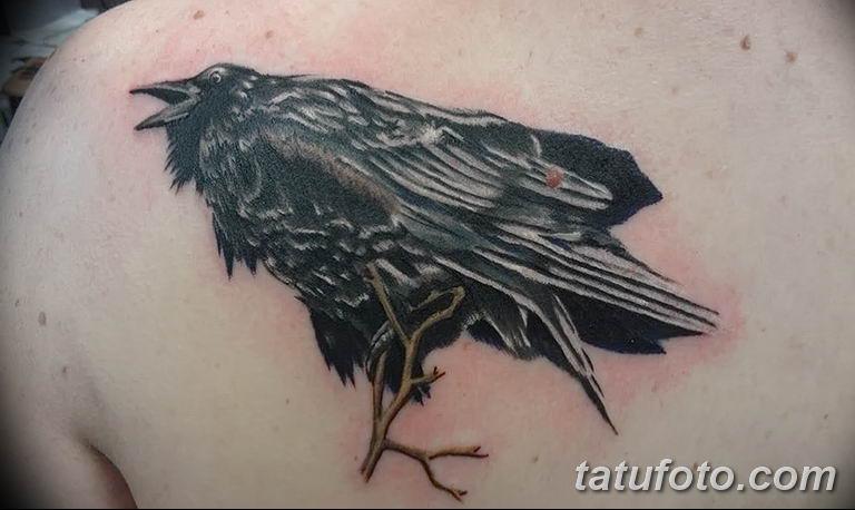 Фото тату черный ворон 15.04.2019 №096 - ideas black raven tattoo - tatufoto.com
