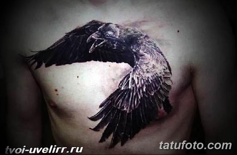 Фото тату черный ворон 15.04.2019 №124 - ideas black raven tattoo - tatufoto.com