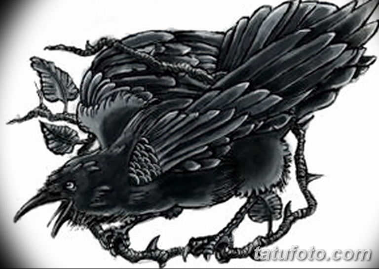 Фото тату черный ворон 15.04.2019 №163 - ideas black raven tattoo - tatufoto.com