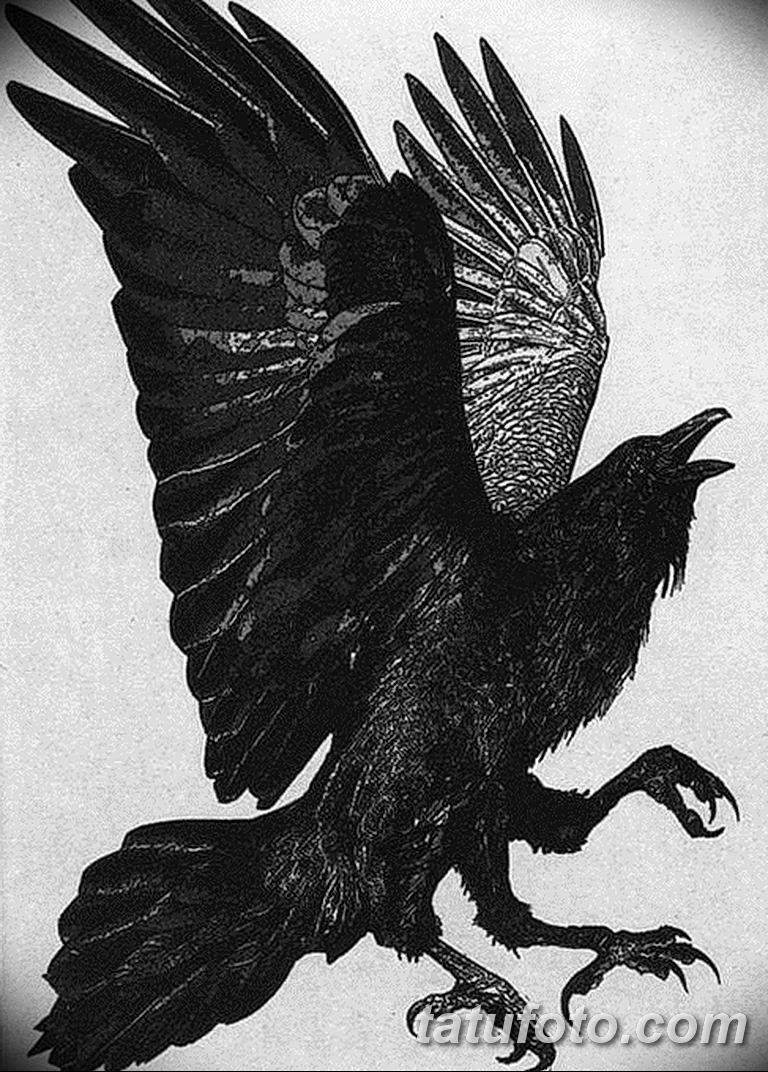Фото тату черный ворон 15.04.2019 №175 - ideas black raven tattoo - tatufoto.com