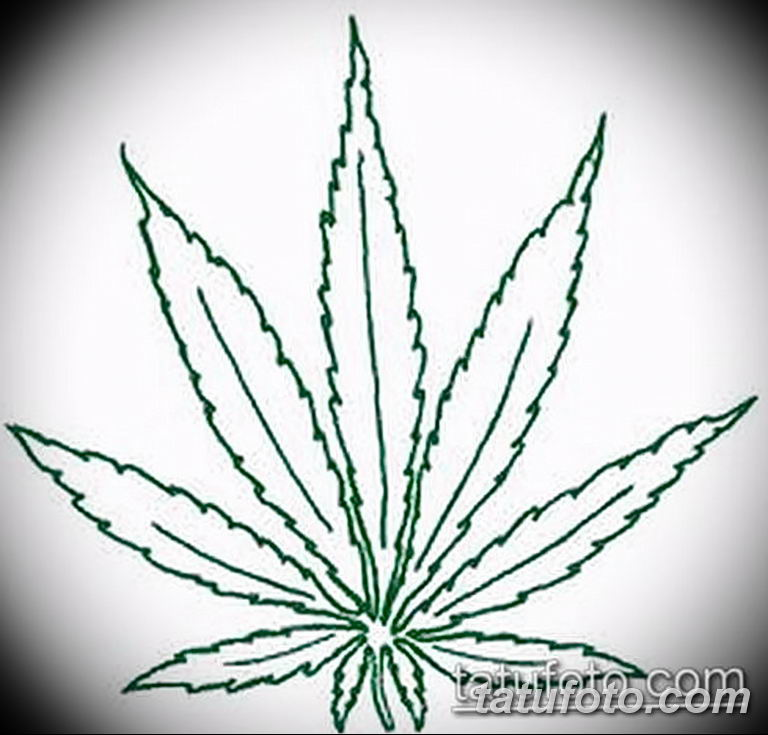 Марихуана валькирия купить марихуану недорого