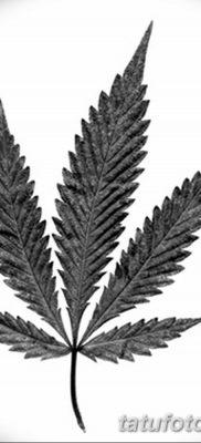 фото эскизы тату марихуана (конопля) 27.04.2019 №054 – tattoo marijuana – tatufoto.com