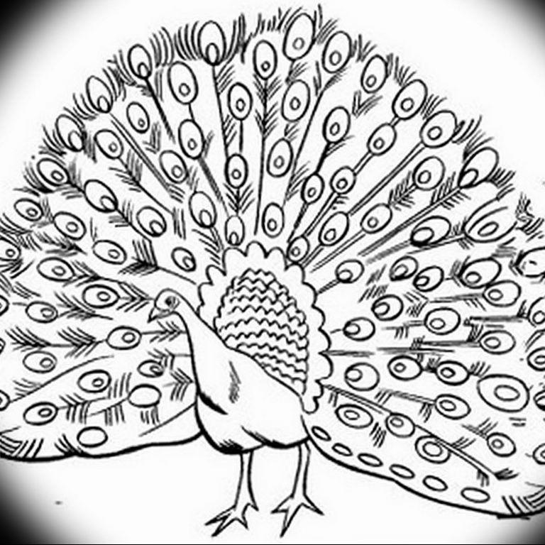 Фото мехенди павлин 13.05.2019 №126 - mehendi peacock - tatufoto.com