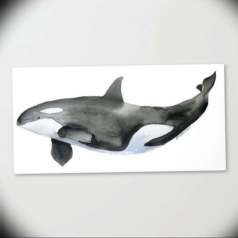 Эскиз для тату касатка 31.05.2019 №028 - sketch tattoo killer whale - tatufoto.com
