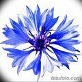 Эскиз для тату цветок василек 31.05.2019 №008 - Sketch tattoo cornflower - tatufoto.com