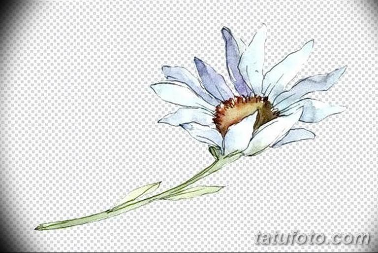 Фото тату белые цветы18.06.2019 №212 - tattoo white flowers - tatufoto.com