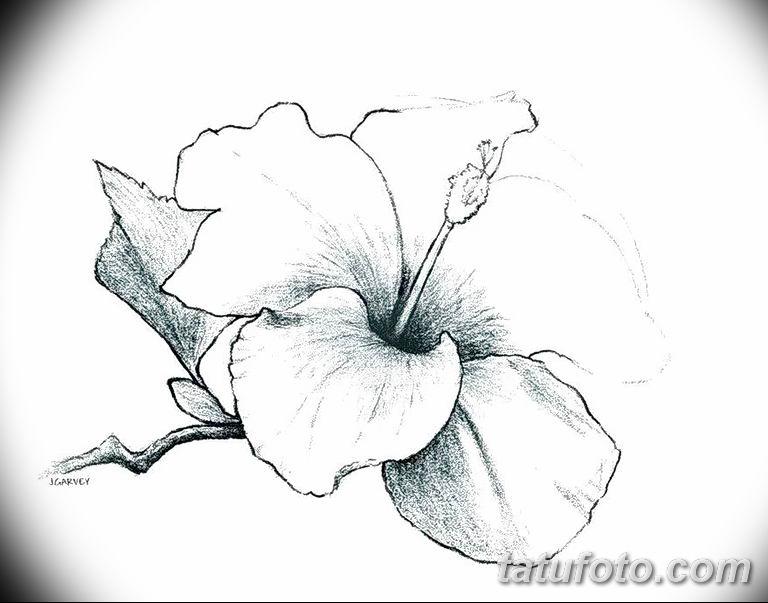 Фото тату белые цветы18.06.2019 №216 - tattoo white flowers - tatufoto.com