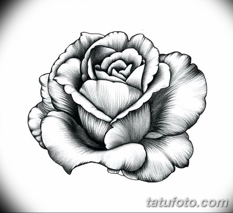 Фото тату белые цветы18.06.2019 №234 - tattoo white flowers - tatufoto.com