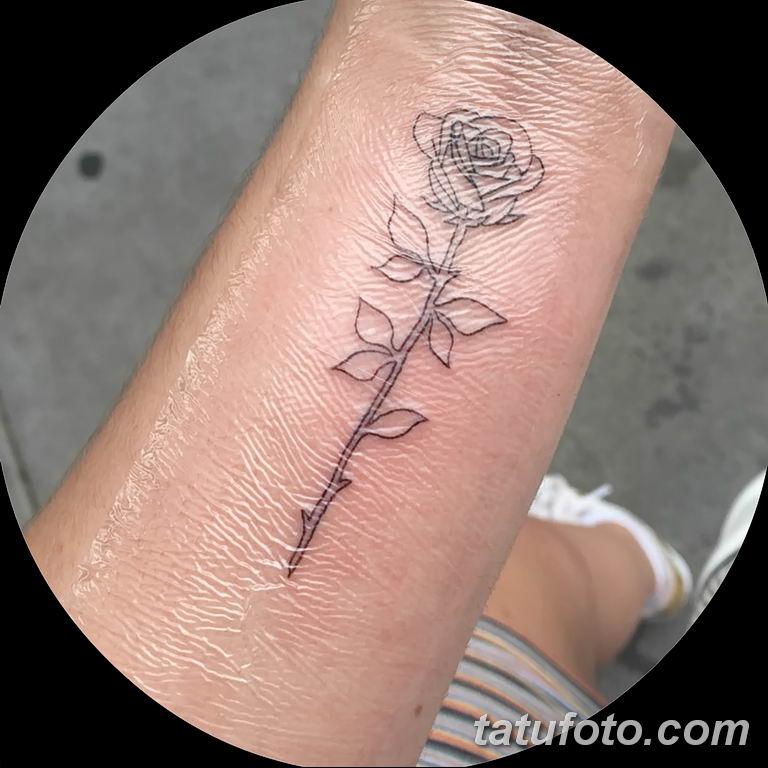 Фото тату роза с шипами 26.06.2019 №010 - spiked rose tattoo - tatufoto.com
