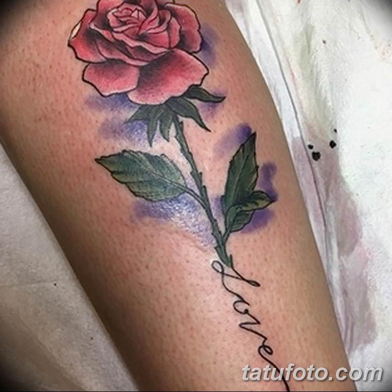 Фото тату роза с шипами 26.06.2019 №042 - spiked rose tattoo - tatufoto.com
