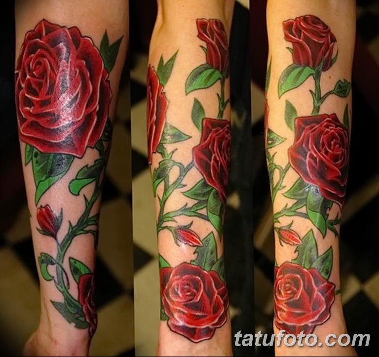 Фото тату роза с шипами 26.06.2019 №063 - spiked rose tattoo - tatufoto.com