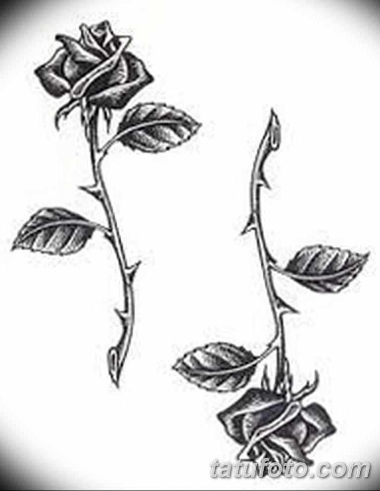 Фото тату роза с шипами 26.06.2019 №104 - spiked rose tattoo - tatufoto.com