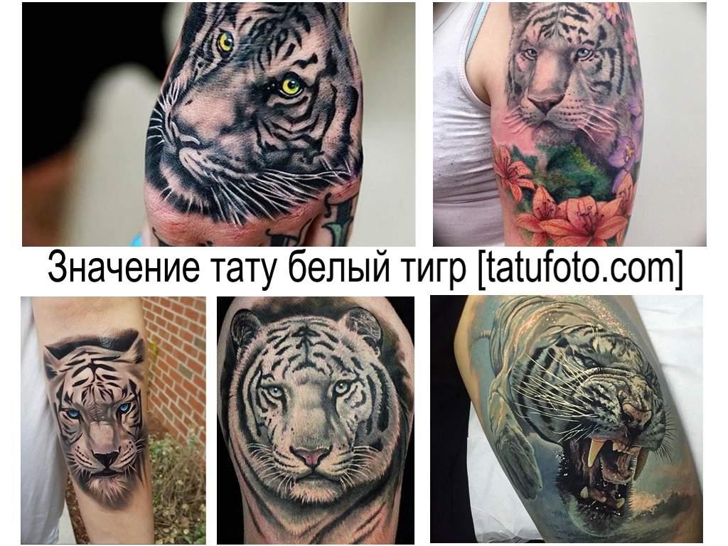 Значение тату белый тигр - информация про особенности рисунка татуировки и коллекция фото примеров готовых работ