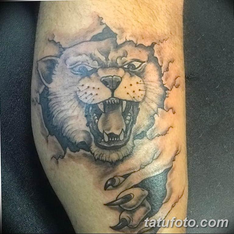 Игрок в американский футбол из Кентукки сделал татуировку с диким котом - фото 2