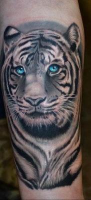 Фото тату белый тигр 28.07.2019 №002 – white tiger tattoo – tatufoto.com