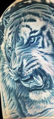 Фото тату белый тигр 28.07.2019 №009 – white tiger tattoo – tatufoto.com