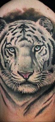 Фото тату белый тигр 28.07.2019 №014 – white tiger tattoo – tatufoto.com