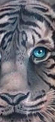 Фото тату белый тигр 28.07.2019 №019 – white tiger tattoo – tatufoto.com
