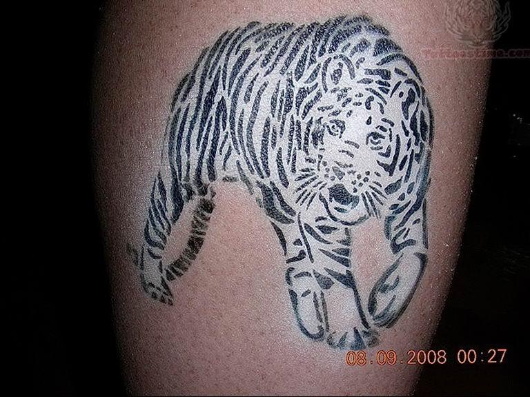Фото тату белый тигр 28.07.2019 №023 - white tiger tattoo - tatufoto.com
