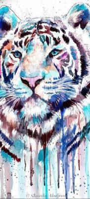 Фото тату белый тигр 28.07.2019 №043 – white tiger tattoo – tatufoto.com