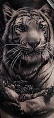 Фото тату белый тигр 28.07.2019 №061 – white tiger tattoo – tatufoto.com