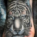 Фото тату белый тигр 28.07.2019 №088 - white tiger tattoo - tatufoto.com