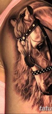 Фото тату голова лошади 24.07.2019 №022 – horse head tattoo – tatufoto.com