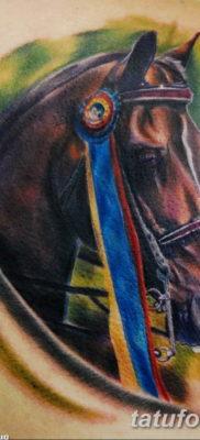 Фото тату голова лошади 24.07.2019 №044 – horse head tattoo – tatufoto.com